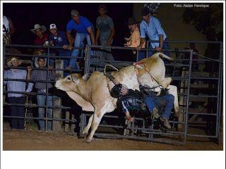 1º Rodeio Top Andrequicé - Primeira noite - Parte 2 | Patos Agora - A notícia no seu tempo - http://www.patosagora.net
