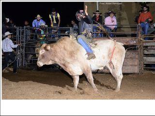 1º Rodeio Top Andrequicé - Segunda noite - Parte 2 - | Patos Agora - A notícia no seu tempo - http://www.patosagora.net