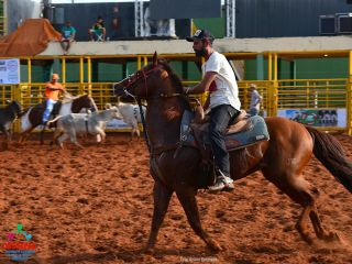 1º Team Penning - JW Haras da Mata-Rodeio da Solidariedade - Parte 1   Patos Agora - A notícia no seu tempo - http://www.patosagora.net