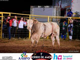 15/03/2020 - 1º Rodeio do Amor - Grande final - Parte 2 | Patos Agora - A notícia no seu tempo - https://patosagora.net