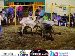 Ranch Sorting - 1º Rodeio do Amor - 14/03/2020 - Parte 2   Patos Agora - A notícia no seu tempo - https://patosagora.net