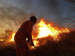 Incêndio atinge pastagem e lavouras de milho e sorgo e Patos de Minas   Patos Agora - A notícia no seu tempo - https://patosagora.net