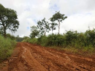 Veículos que levavam vacina para idosos da zona rural atolam em estrada vicinal | Patos Agora - A notícia no seu tempo - https://patosagora.net