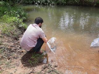 Peixes são soltos nas microbacias do Córrego do Arroz e Córrego do Bauzinho | Patos Agora - A notícia no seu tempo - https://patosagora.net