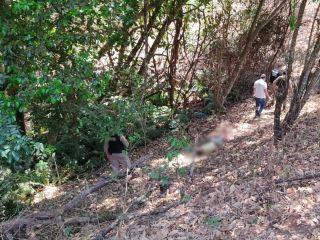 Homicídio: Jovem que estava desaparecido é encontrado sem vida    Patos Agora - A notícia no seu tempo - https://patosagora.net