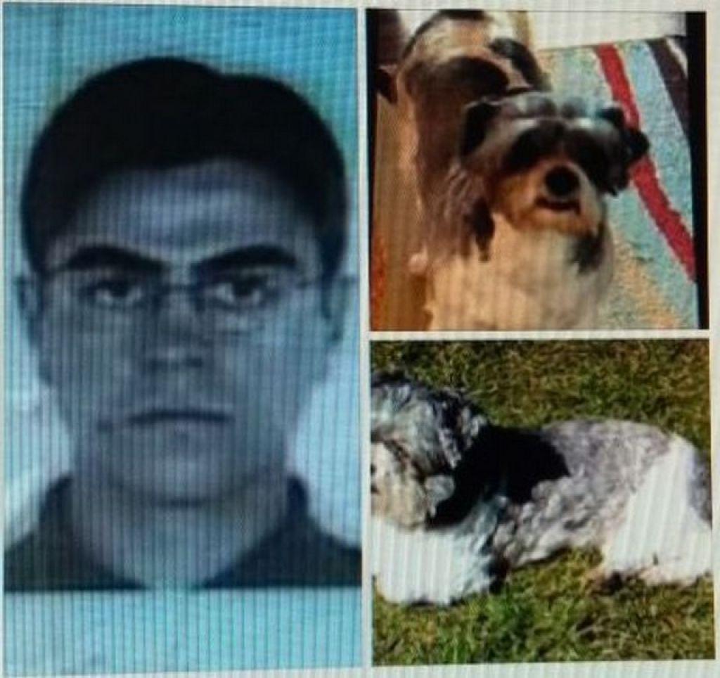 Carmense morador de Nova York é acusado de matar cruelmente um cachorro e terá que se apresentar à justiça americana