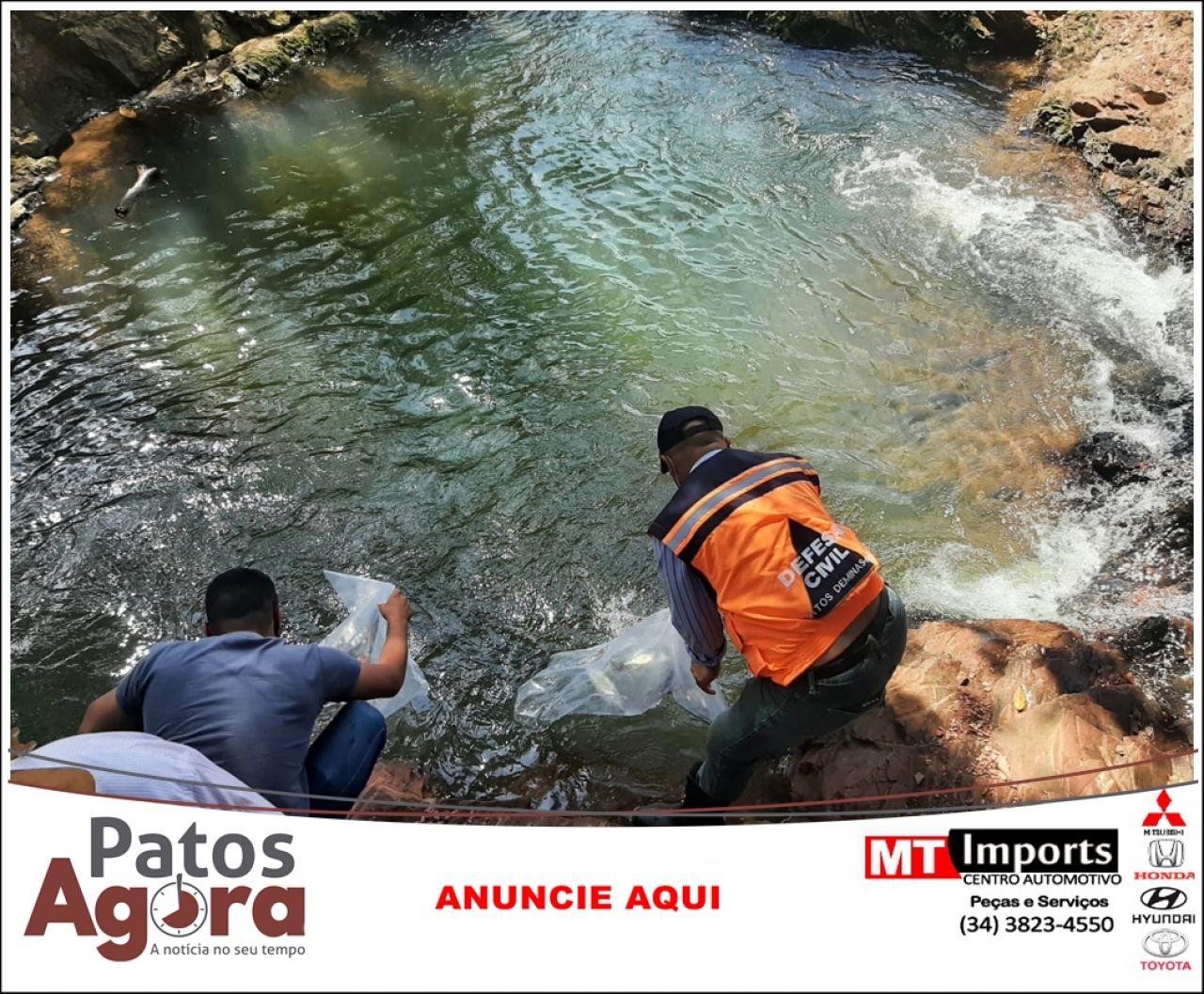 Peixes são soltos nas microbacias do Córrego do Arroz e Córrego do Bauzinho