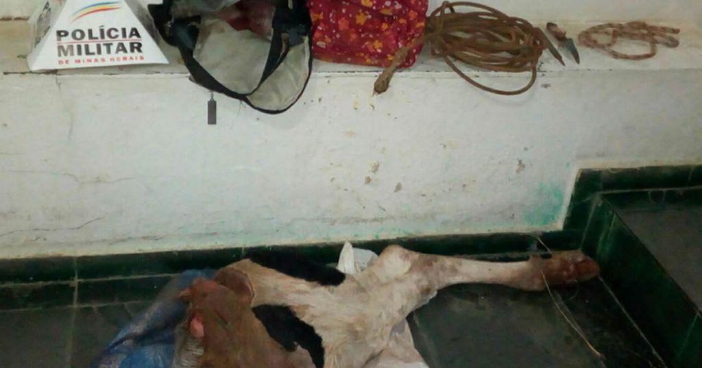Dupla é presa por matar vaca e roubar partes da carne do animal para consumo