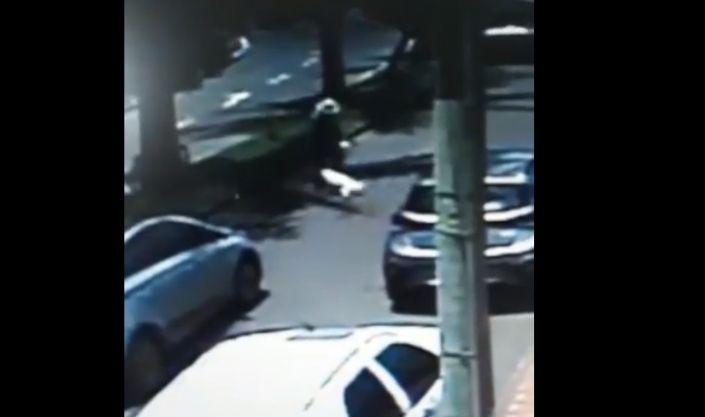 Covardia após atropelamento de cãozinho em Lagoa Formosa