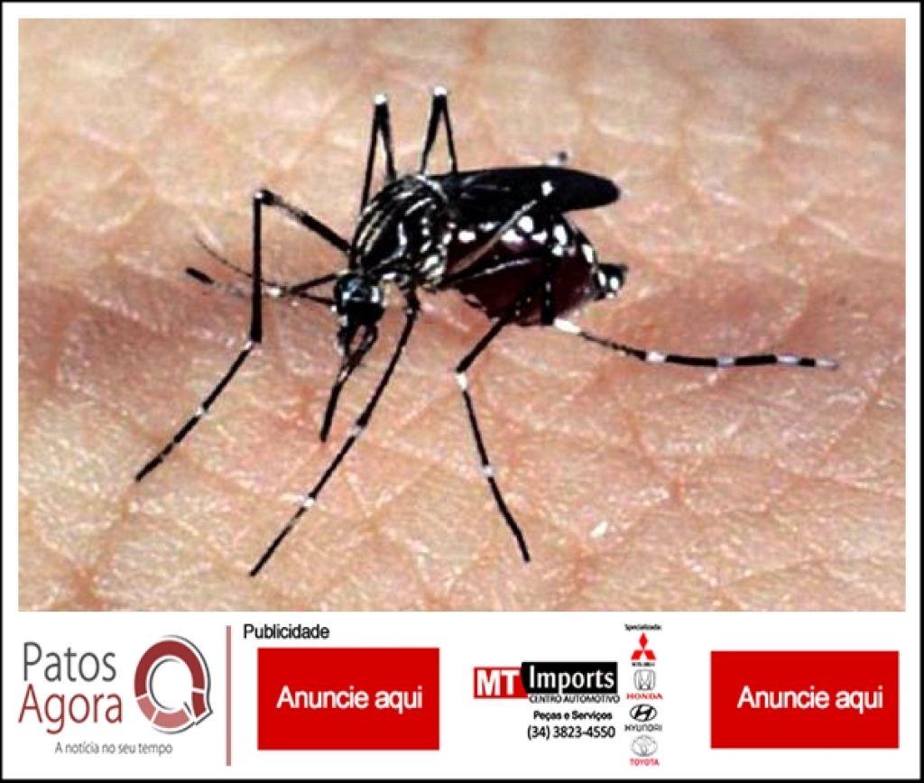 Patos de Minas registra primeira morte por Chikungunya registrada em Minas Gerais em 2019