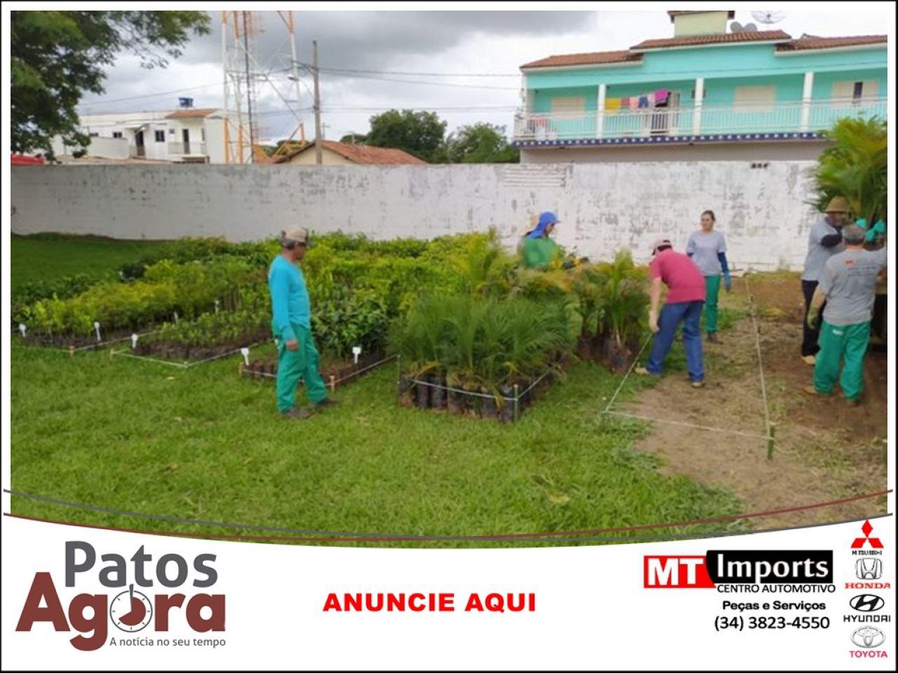 IEF e Secretaria de Agricultura de Presidente Olegário fazem doação de mais de 6 mil mudas de árvores